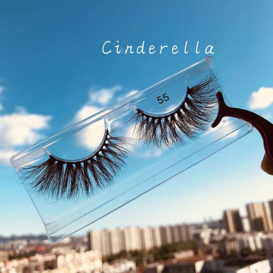 Cinderella Array image113